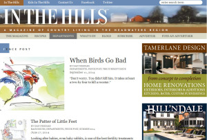 Fenceposts Column In The Hills Magazine
